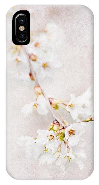 Triadelphia Cherry Blossoms IPhone Case