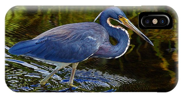 Tricolor Heron IPhone Case