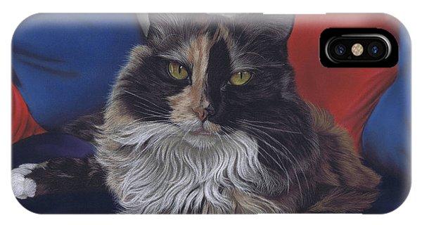 Tricolore IPhone Case