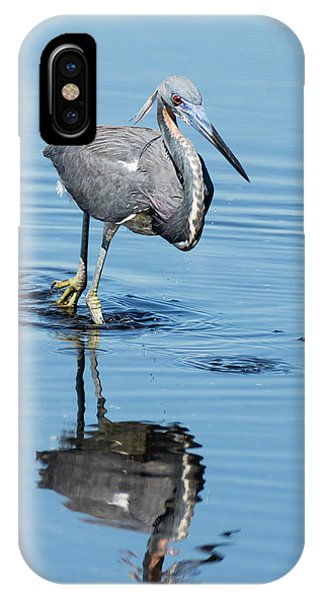 Tricolored Heron Full Tilt IPhone Case