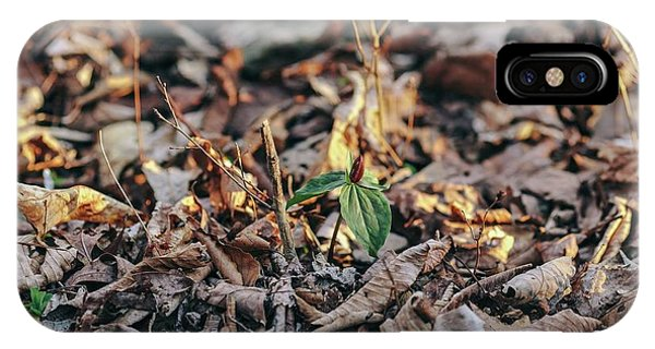 Trillium Blooming In Leaves On Forrest Floor IPhone Case