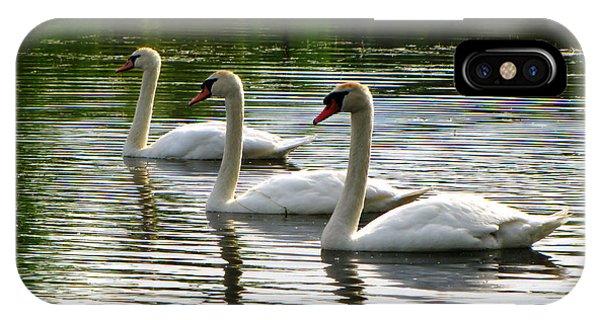 Triplet Swans IPhone Case