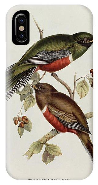 Lovebird iPhone Case - Trogon Collaris by John Gould