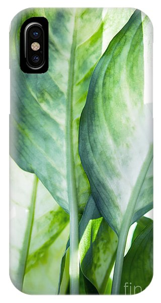 Leaf iPhone Case - Tropic Abstract  by Mark Ashkenazi
