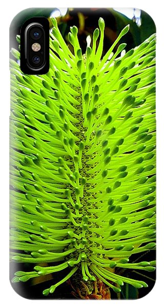 Tropical Flower IPhone Case