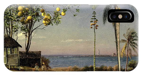Grapefruit iPhone Case - Tropical Scene by Albert Bierstadt