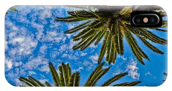 New Leaf iPhone Case - Tropical Skies by Az Jackson