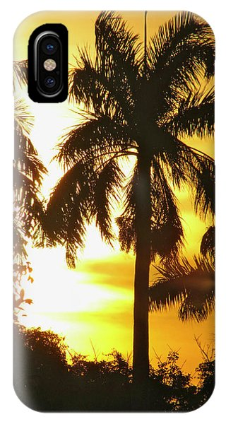 Tropical Sunset Palm IPhone Case