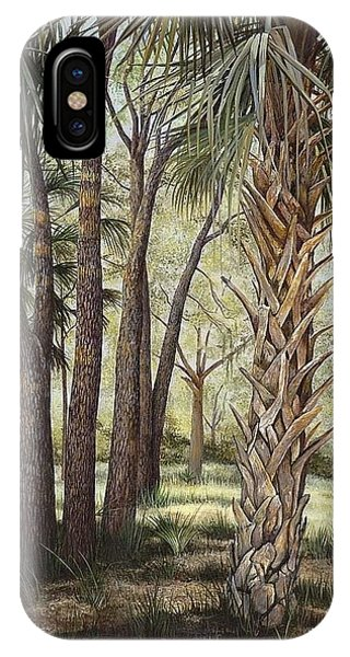 Tropical Trail's End IPhone Case