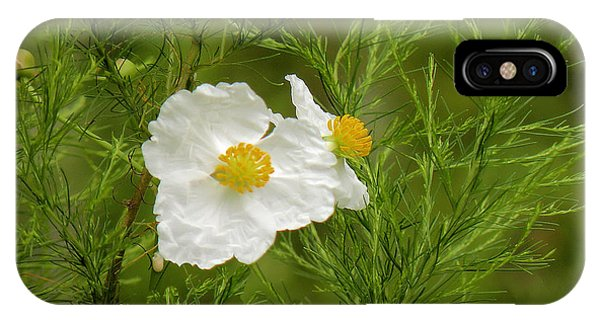 Tropical Wildflowers Phone Case by Rosalie Scanlon