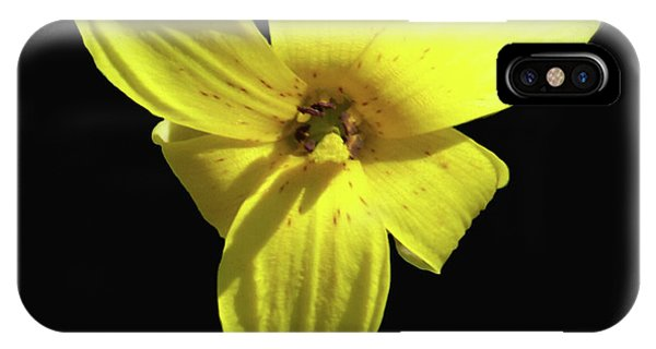 Trout Lily IPhone Case