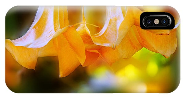 Yellow Trumpet iPhone Case - Trumpet Glory by Terry Davis