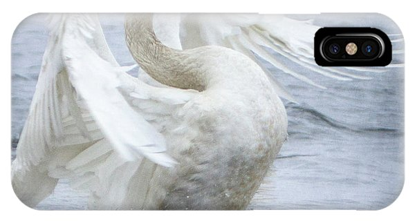 Trumpeter Swan - Misty Display 2 IPhone Case