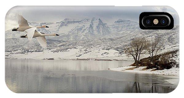 Trumpeter Swans Wintering At Deer Creek IPhone Case