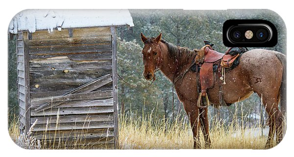 Toilet iPhone Case - Trusty Horse  by Inge Johnsson