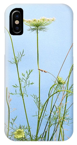 Tuft Of Queen Anne's Lace IPhone Case