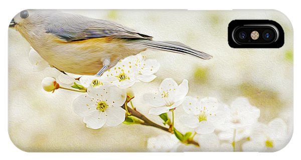 Titmouse iPhone Case - Tufted Titmouse With Seed by Laura D Young