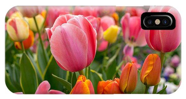 Tulip Bed IPhone Case