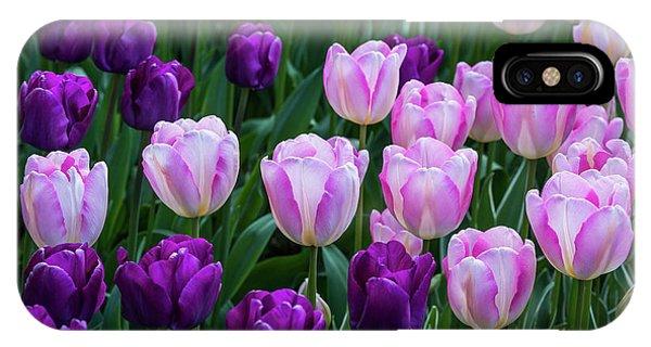 Tulip Blush IPhone Case