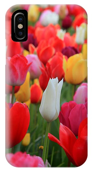 Tulip Color Mix IPhone Case