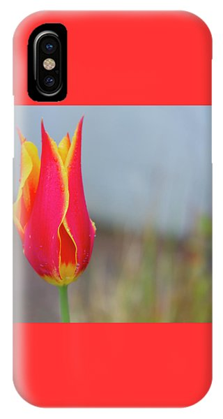 Tulip Fire IPhone Case