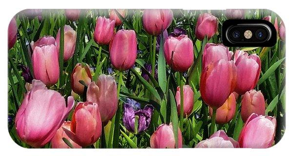 Tulip Flowers  IPhone Case