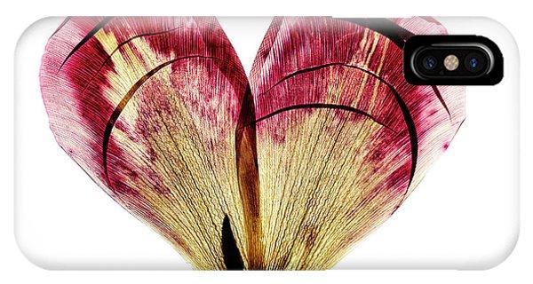White Tulip iPhone Case - Tulip Heart by Nailia Schwarz