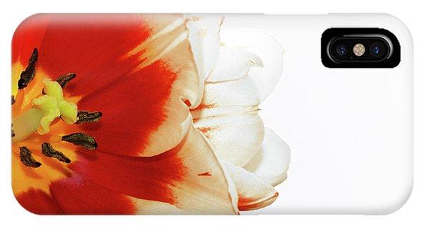 Tulip Statement IPhone Case