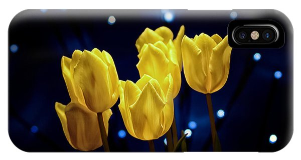 Blossoms iPhone Case - Tulip Twinkle by Tom Mc Nemar