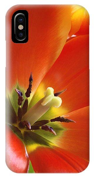 Tuliplicious IPhone Case