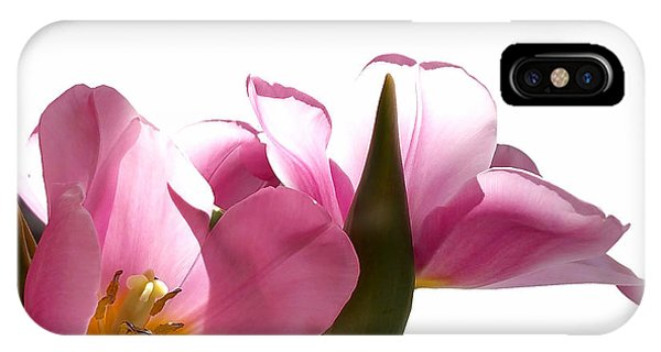 Close Up Floral iPhone Case - Tulips 8 by Kume Bryant