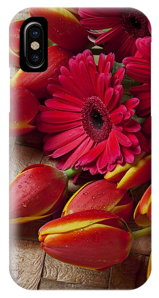 Tulips And Red Daisies  IPhone Case
