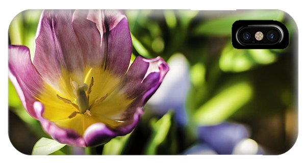 Tulips At The End IPhone Case