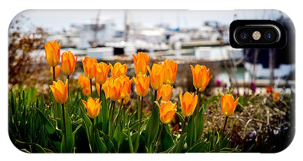 Tulips By The Harbor IPhone Case