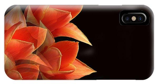 Tulips Dramatic Orange Montage IPhone Case