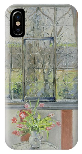 Window Pane iPhone Case - Tulips For A January Morning by Timothy Easton
