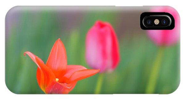 Tulips In My Garden IPhone Case