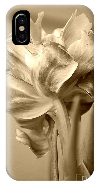 Tulips In Sepia IPhone Case