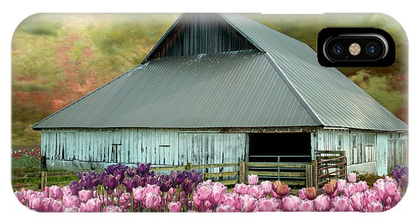 Tulips In Skagit Valley IPhone Case