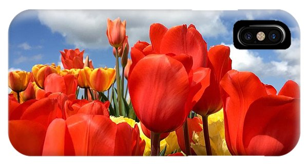 Tulips In The Sky IPhone Case