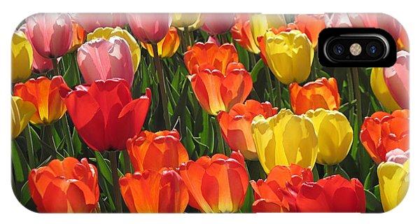 Tulips Like Sunlight IPhone Case
