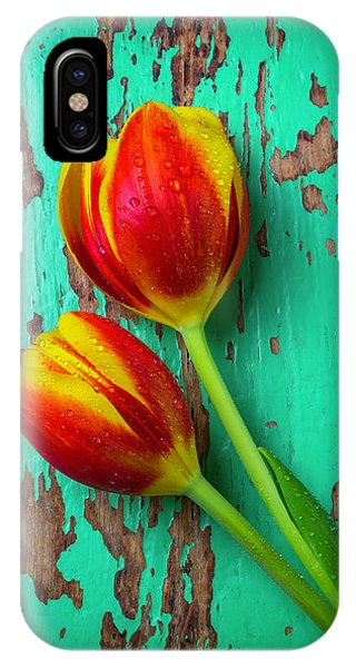 Tulips On Green Wood IPhone Case