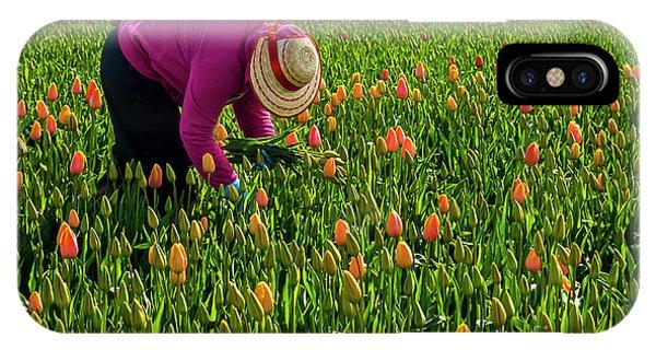 Tulips Picker IPhone Case