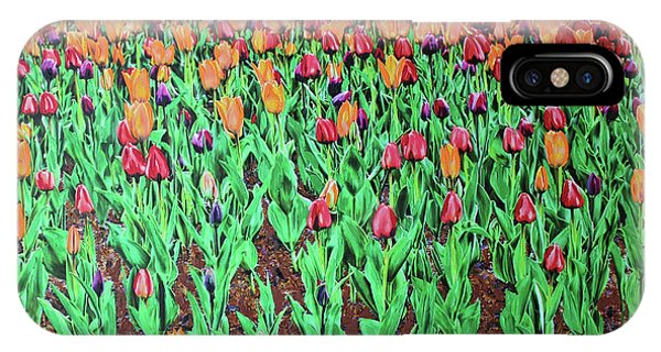 Tulips Tulips Everywhere IPhone Case