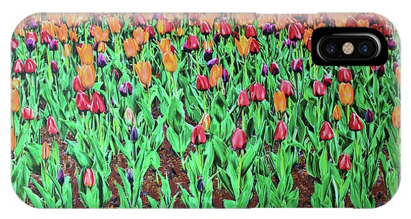IPhone Case featuring the painting Tulips Tulips Everywhere by Deborah Boyd