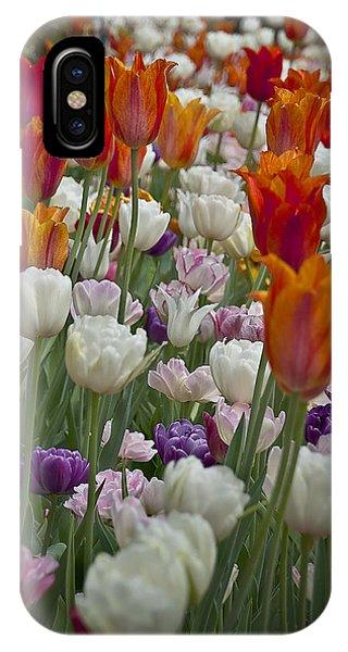 Tulips... Tulips... Everywhere IPhone Case