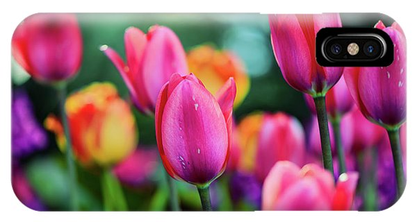 iPhone Case - Spring Tulips by Viktor Birkus