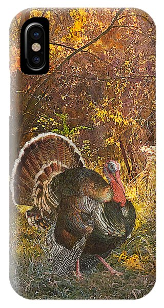 Turkey In The Woods IPhone Case