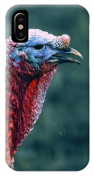 Turkey Portrait IPhone Case