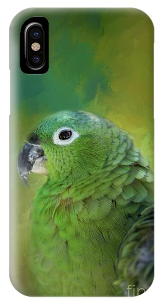 Turquoise-fronted Amazon IPhone Case